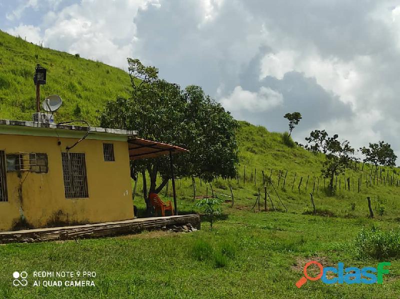 Finca en Tinaquillo, Estado Cojedes. Código FOT   157 6