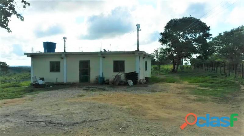SKY GROUP Vende Terreno Agropecuario 1
