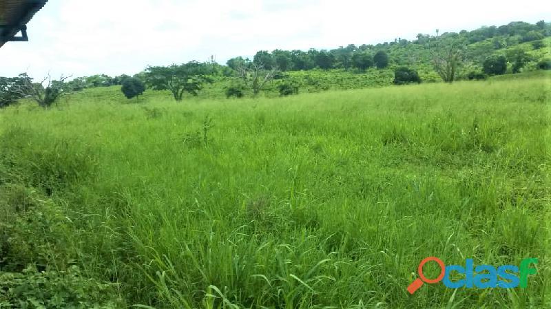 SKY GROUP Vende Terreno Agropecuario 7
