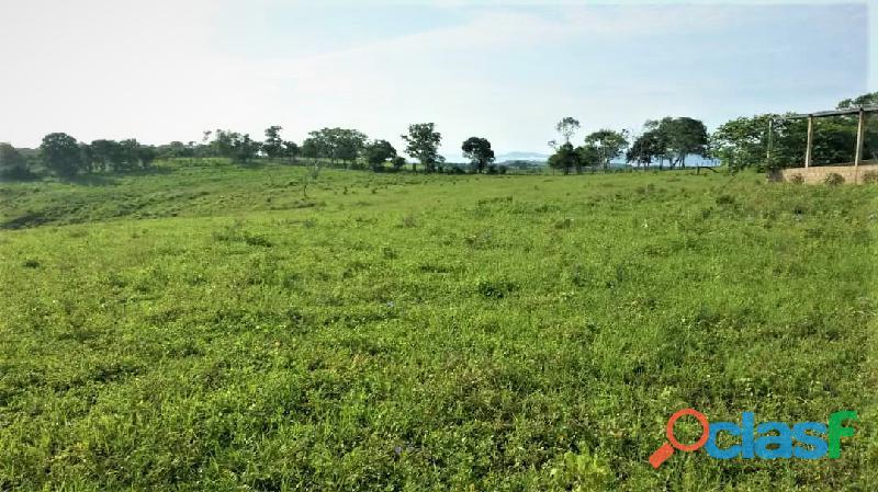 SKY GROUP Vende Terreno Agropecuario 10