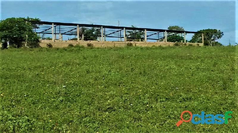 SKY GROUP Vende Terreno Agropecuario 16