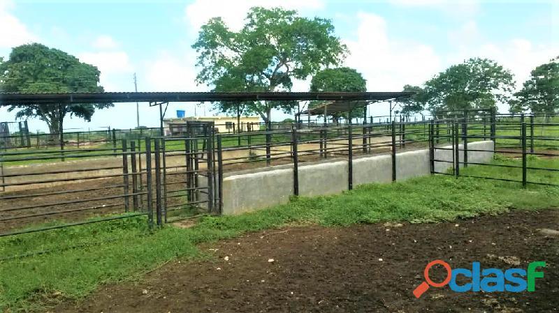 SKY GROUP Vende Terreno Agropecuario 17