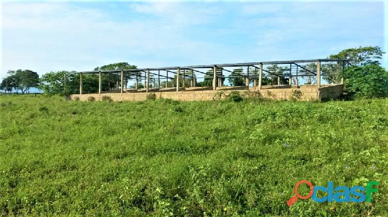 SKY GROUP Vende Terreno Agropecuario 19