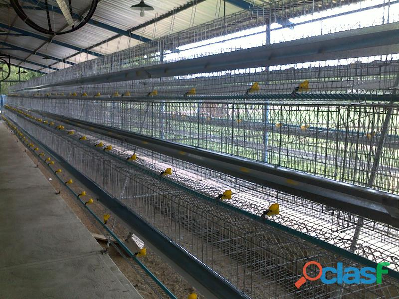Fabrica de jaulas/nidales para aves ponedoras y mucho mas