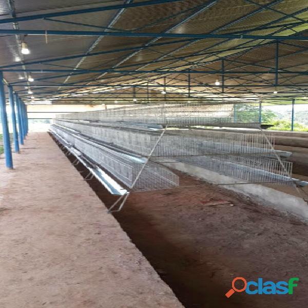 Fabrica de jaulas/nidales para aves ponedoras y mucho mas 1