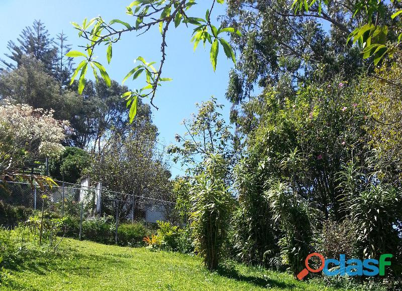 Se vende terreno de 250 m². Urbanización el Junko. 4