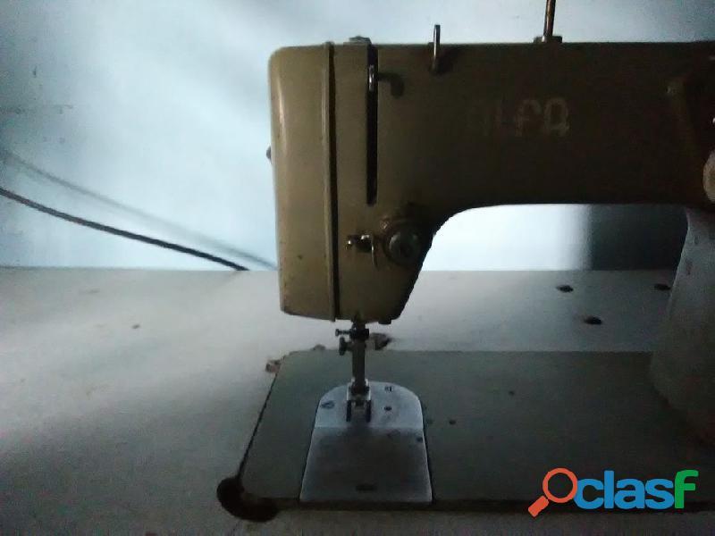 Máquina de coser semi industrial alfa