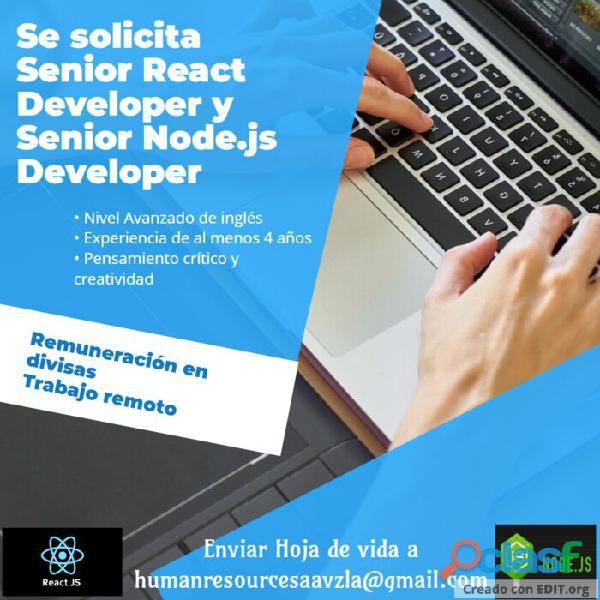 Senior react developer y senior node.js developer
