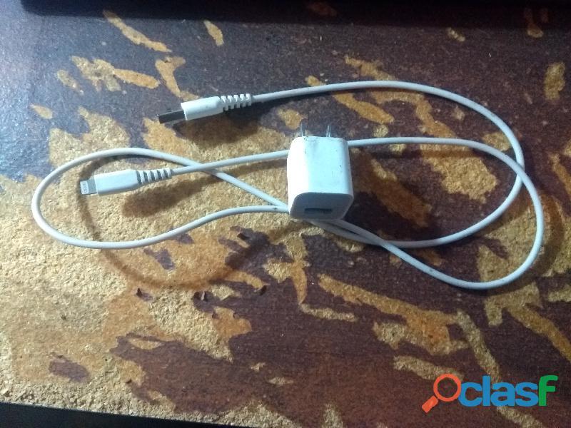 Iphone 5 con cargador y carcasa 2