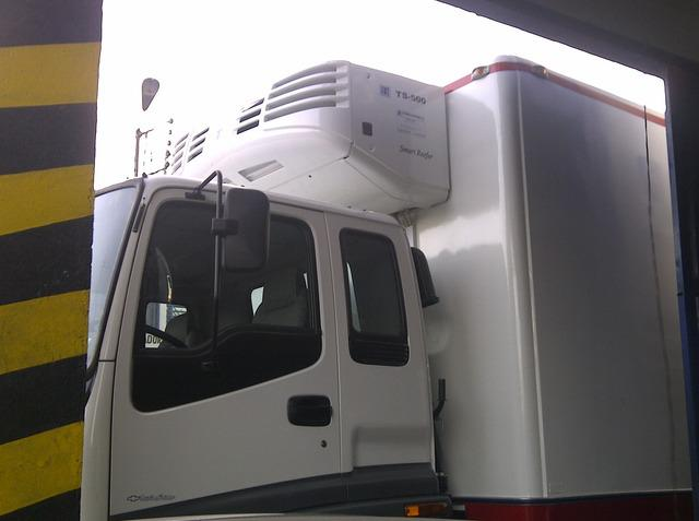 Thermo king carro tipo fvr