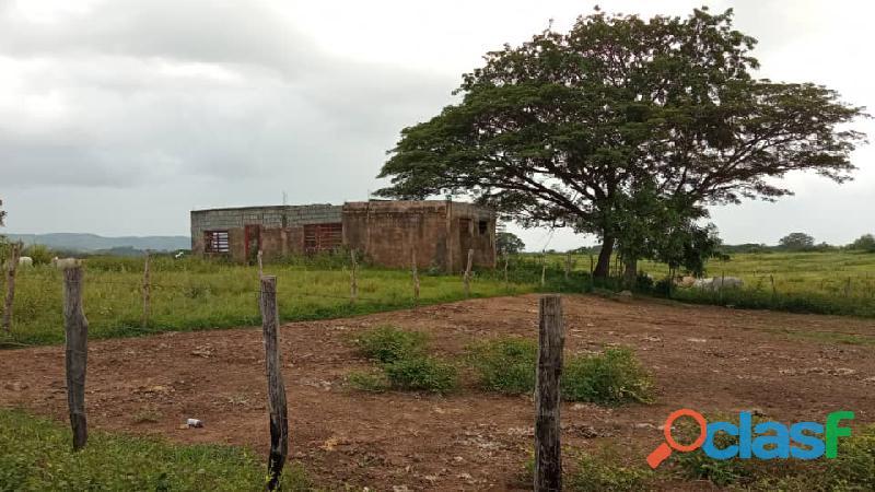 Terreno En Venta en El Pao, Edo. Cojedes